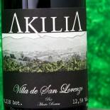 Akilia Villa De San Lorenzo 2016