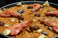 Fish Rice Dishes