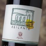 Ampeleia Alicante