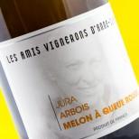 Les Amis Vignerons D'Anne Claude L. Arbois Melon À Queue Rouge 2009