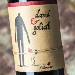 David & Goliath 2018