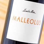 Malleolus 2015 Magnum
