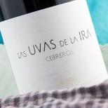 Las Uvas de la Ira Cebreros 2011