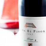 Viña El Pisón 2016 Magnum