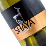 Shaya Habis 2017