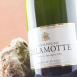 Delamotte Brut Blanc de Blancs Magnum