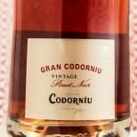 Gran Codorníu Pinot Noir Vintage 2014