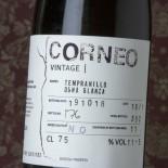 Frontio Corneo
