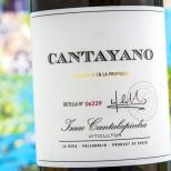 Cantayano 2019