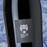 Sicus Garrut 2018