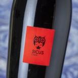Sicus Sumoi 2018